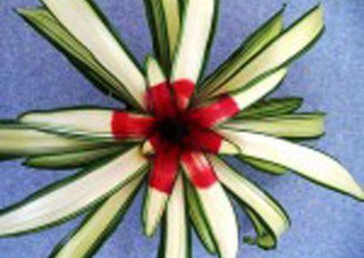 Bromeliads: Neoregelia Ardie